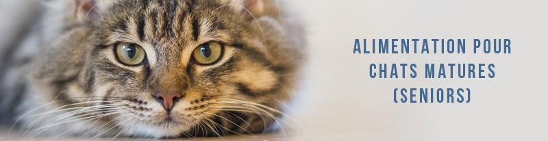 alimentation pour les chats seniors