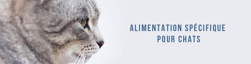 alimentation spécifique pour chats