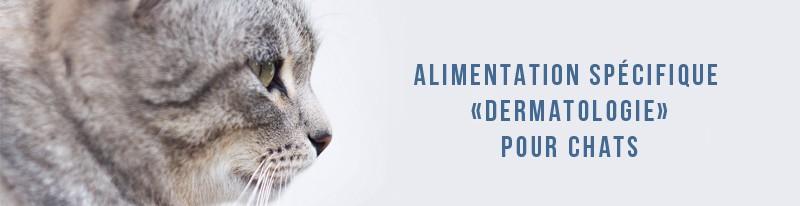 alimentation spécifique dermatologie pour chats