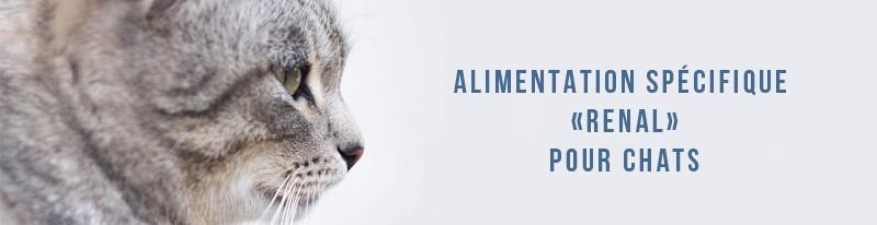 alimentation spécifique rénale pour chats