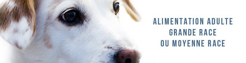 alimentation adulte pour chiens de moyenne et grande race