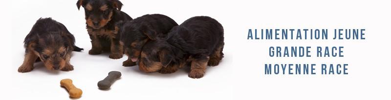 alimentation pour jeunes chiens de moyennes et grande race