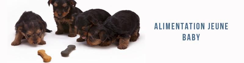 alimentation baby pour chiens de moyennes et grande race